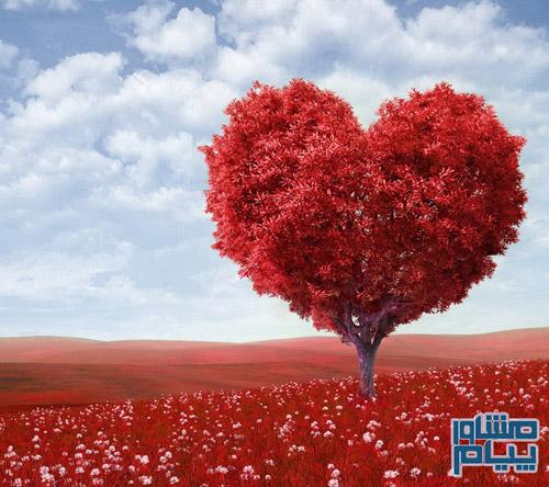 عشق یا هوس